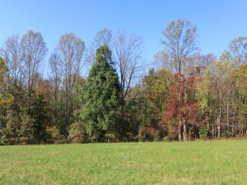 9.5 Acres Great Location : Moneta : Bedford County : Virginia