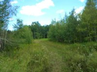 114 Acres Hunting Land Near Ithaca