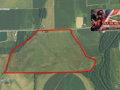 244 Ac - Wrp Tract For Deer : Holly Ridge : Richland Parish : Louisiana
