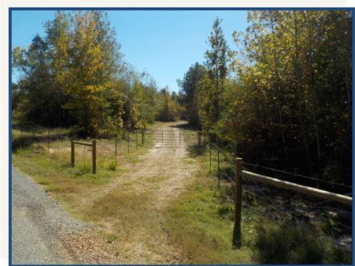 42 Acres In Noxubee County : Macon : Noxubee County : Mississippi