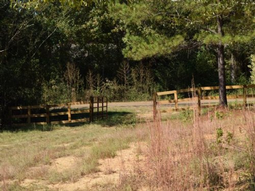77 Acres In Copiah County : Crystal Springs : Copiah County : Mississippi