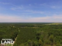 Aulander Timber And Hunting Tract
