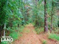 Windsor Hoggard Mill Creek Hunting