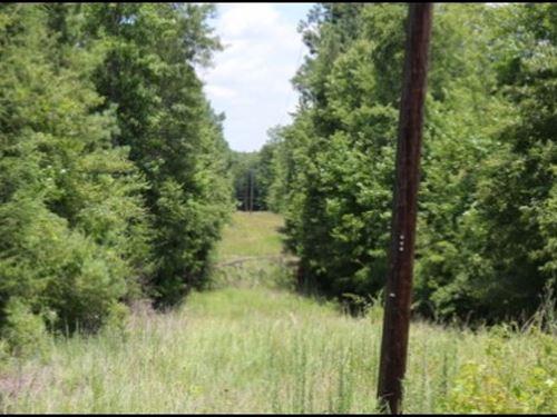 35.5 Acres In Neshoba County : Philadelphia : Neshoba County : Mississippi