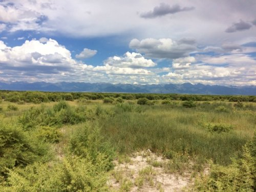 236054 - Stunning Views 36.8 Acres : Moffat : Saguache County : Colorado