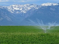 Lower Flathead River Drainage Farm : Ronan : Lake County : Montana
