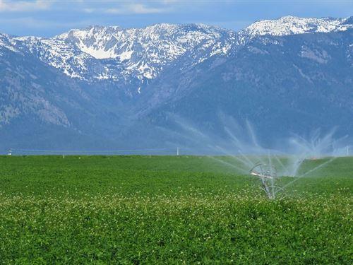 Lower Flathead River Drainage Farm : Ronan : Lake County : Montana