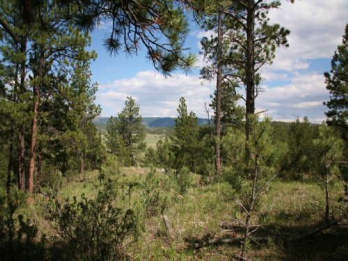 Valley View Acreage : Newcastle : Weston County : Wyoming