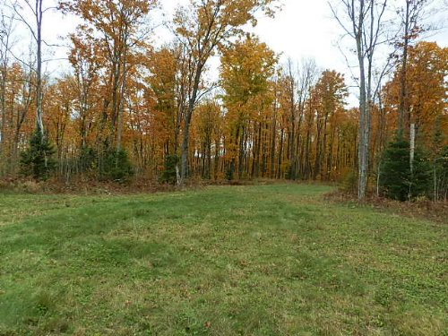 Amazing Hunting Property : Sherman : Iron County : Wisconsin