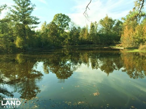Rutherford Road Homesite & Recreati : Hurtsboro : Barbour County : Alabama