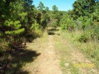 5 Acre Pine Mountain Ranch