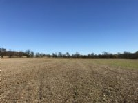 60 Acre Parcel In Berlin Buildable