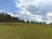 14.87 Acres Pasture Land
