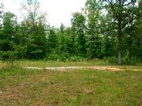 Gorgeous 45 Acres In Raymondville : Raymondville : Texas County : Missouri