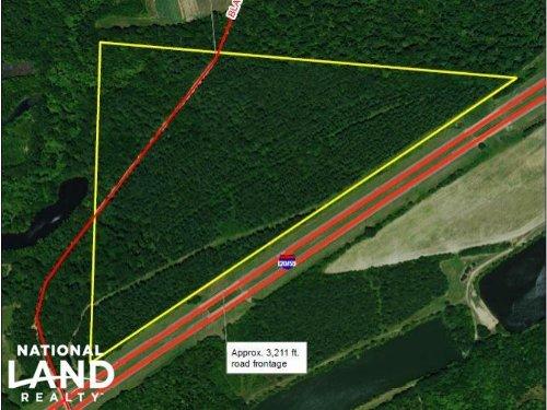 Black Warrior Road Hunting & Timber : Tuscaloosa County : Alabama