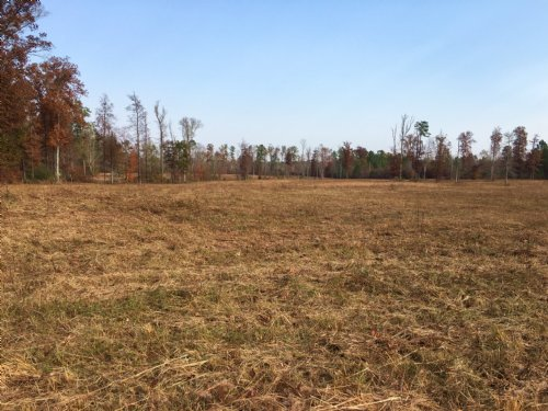 30 Acres - Pasture - Creek : Odenville : Saint Clair County : Alabama