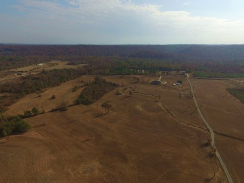 59 Acres - Pasture And Woods : Ashville : St. Clair County : Alabama