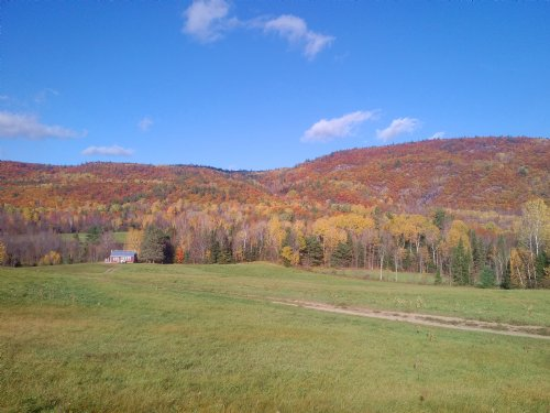 300 Acres Farm, Wood, Mountain Land : Chichester : Canada