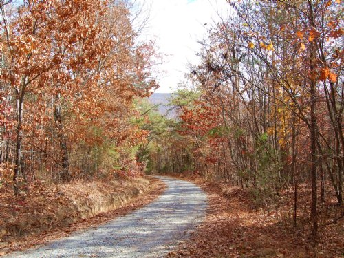 85 Acres Of Recreational Land : Dunlap : Bledsoe County : Tennessee