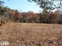 Mooresville Crop & Farm Land
