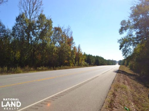 10+/- Acres Timberland On Highway 4 : Fountain Hill : Ashley County : Arkansas