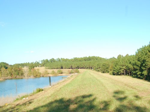 290 Acres With High Fence : Clayton : Barbour County : Alabama