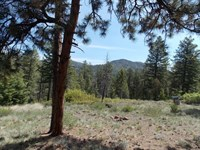 8163074 - Private Great Building Si : Cotopaxi : Fremont County : Colorado