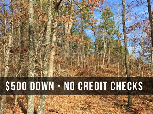 10 Wooded Acres Loaded With Deer : Mountain View : Howell County : Missouri