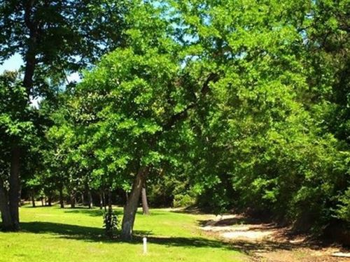 20.97 Acres In Pearl River County : Carriere : Pearl River County : Mississippi