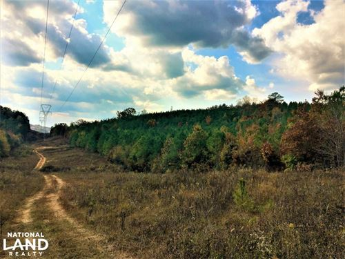 Hwy 278 Rural Homesites : Piedmont : Calhoun County : Alabama