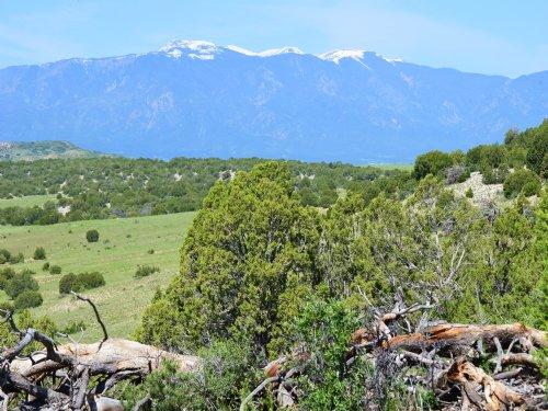 Cedarwood Ridge Ranch : Colorado City : Pueblo County : Colorado