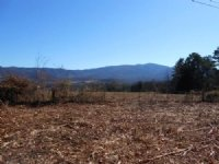 98.46 Acres, Timber, Creek : Newport : Cocke County : Tennessee