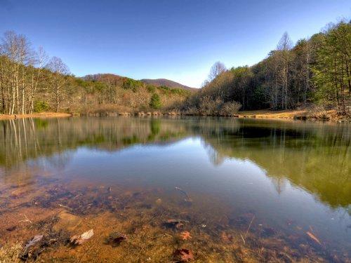 Mountain Retreat Bordering Usnf : Cherry Log : Gilmer County : Georgia