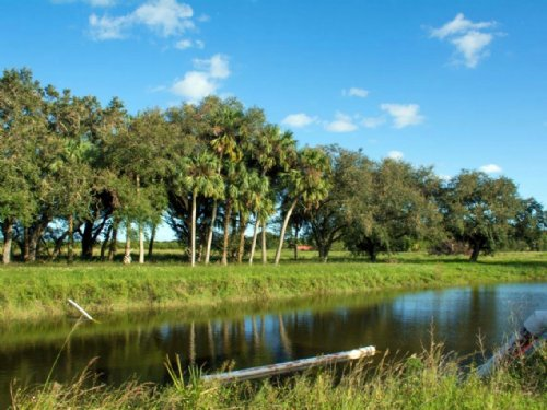 Orange Avenue 65 Acres : Fort Pierce : Saint Lucie County : Florida