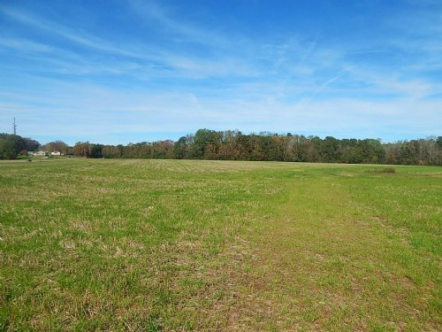 Potential Horse Farm : Madison : Morgan County : Georgia