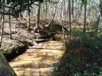 Turkey Creek Retreat : Quincy : Gadsden County : Florida