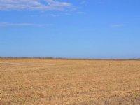 Green Acres Ranch Dryalnd Farm