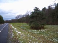 22 Acres Near Ithaca With Stream