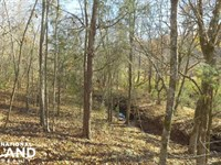 Hwy 71 Timber Investment And Recrea : Abbeville : Abbeville County : South Carolina