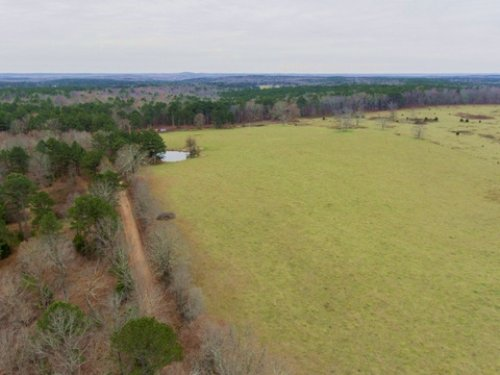 Large Stocked Pond On 80 Acres : Willow Springs : Howell County : Missouri