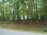 18.226 Acres Mountain Land : Independence : Grayson County : Virginia