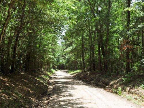 36 Ac Wilderness Rd : Point Blank : San Jacinto County : Texas