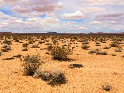 10.28 Acres Of Agricultural Land : Adelanto : San Bernardino County : California