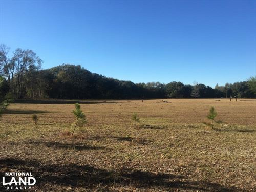 Early Branch Pasture/Recreational T : Early Branch : Hampton County : South Carolina