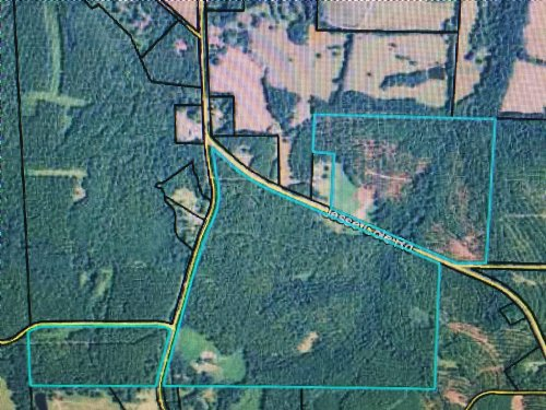 216 Acres Of Mature Timber : Manchester : Meriwether County : Georgia