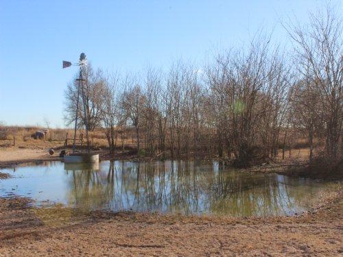 Big Time 160 : Pratt County : Kansas