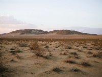 Your Desert Dream Awaits Water : Twentynine Palms : San Bernardino County : California