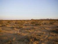 Your Dream Land Awaits With Power : Twentynine Palms : San Bernardino County : California