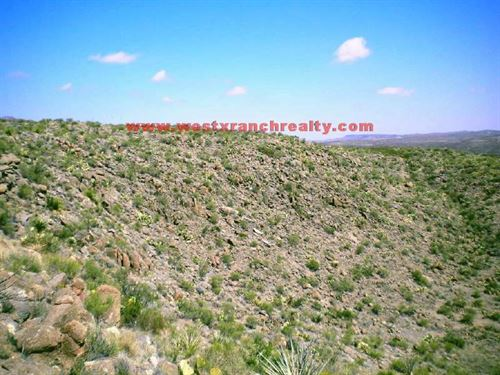335 Acres in Terlingua, Texas : Terlingua : Brewster County : Texas