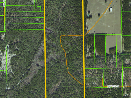 Hunting & Recreational Property : Bell : Gilchrist County : Florida